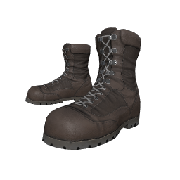 Dark Brown Combat Boots