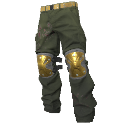Gold Padded Pants