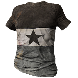 Gray Striped Shirt with Star