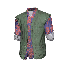 Hawaiian Shirt and Vest