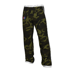 Twin Galaxies Warmup Pants (Camo)