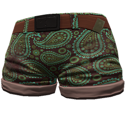 Skin: Aqua Paisley Shorts