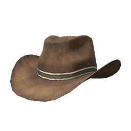 Skin: Brown Cowboy Hat