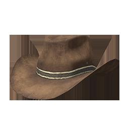 Skin: Brown Cowboy Hat
