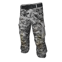 Skin: Digital Camo Pants