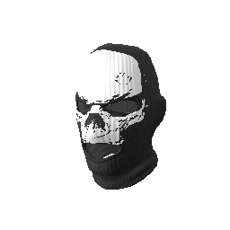 Skin: Heavy Assault Skull Mask