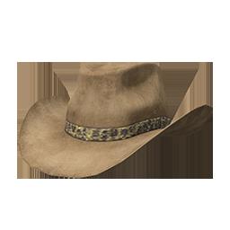 Skin: Tan Cowboy Hat