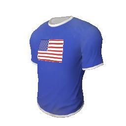 Skin: Team USA T-Shirt