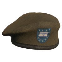 Brown IL Military Beret