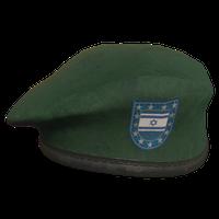 Green IL Military Beret