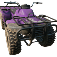 Quadbike Purple Skin