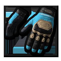 Ashek's Gloves