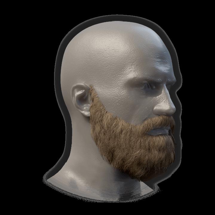 Hibernation Beard