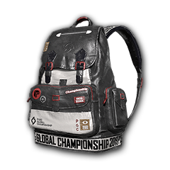 PGC 2019 Backpack (Level 2)