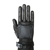 Veteran Gloves